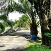 Residential Land for Sale in Windmill Park Cou...